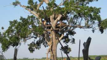 Nature's Best Kept Secret - Udamalale
